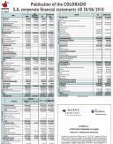 Financial Statement (semestrial) 2018