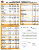 Financial Statement (semestrial) 2017