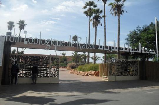 حديقة الحيوانات بالرباط